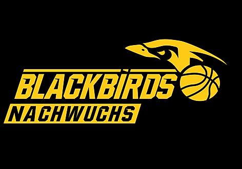 Logo Blackbirds Nachwuchs_16-9.png