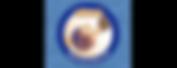 logo_blackbirdsNachwuchs_65-170.png