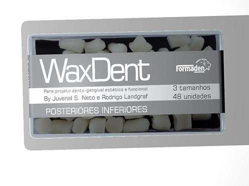 Dentes de cera Waxdent Posteriores Inferiores