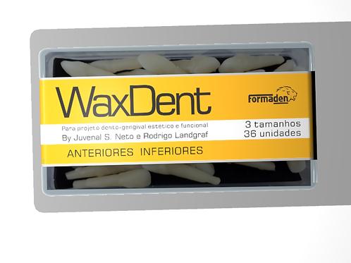 Dentes de cera Waxdent Anteriores Inferiores