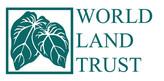 WLT logo.jpg