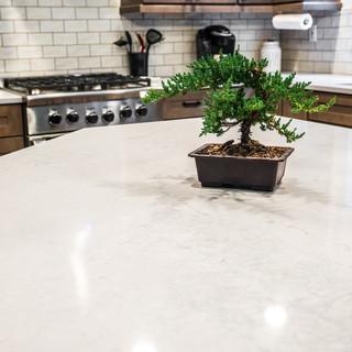 Wepking_Kitchen Remodel-4.jpg