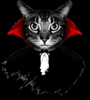 VampireCat2.png