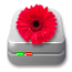 Flower Pot - run OS4 on Windows or Mac