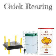 Chick Rearing Tile
