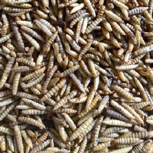 Calciworms Refill Bag 400g