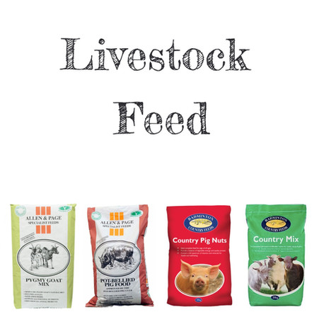 Livestock Feed Tile