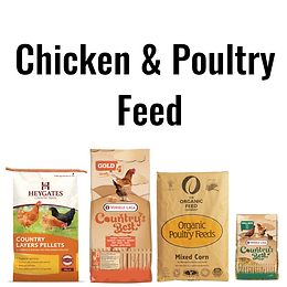 Chicken & Poultry Feed & Treats