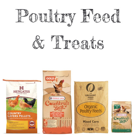 Poultry Feed & Treats
