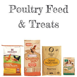Chicken & Poultry Feed
