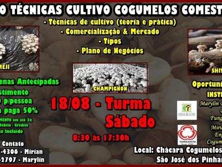 Curso: Técnicas de Cultivo de Cogumelos Comestíveis