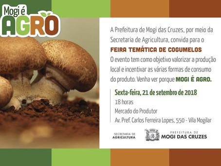 Feira Temática de Cogumelos em Mogi das Cruzes-SP