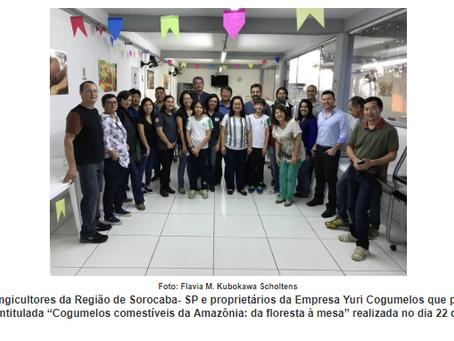 Pergunta durante palestra leva a publicação sobre biodiversidade de cogumelos comestíveis de São Pau