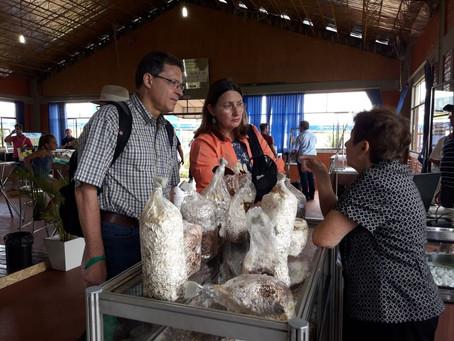 Embrapa apresenta tecnologias sustentáveis no Show Rural Coopavel 2018