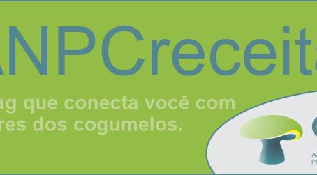 Compartilhe sua Receita de Cogumelos com a ANPC