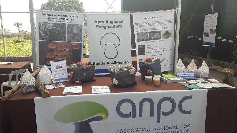 Espaço da APTA Regional em parceria com a ANPC.