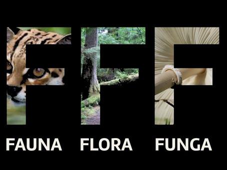 Fauna, Flora e Funga