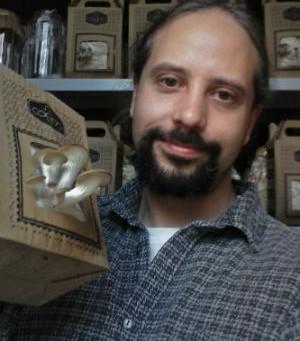 Pesquisador cria técnica para cultivo de cogumelos em caixa de papelão