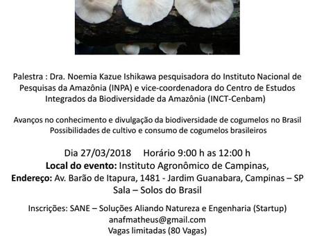 Palestra sobre Cogumelos Comestíveis Nativos