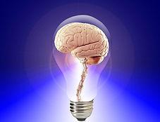 Top-Brain.jpg