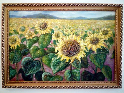 B23 - Sonnenblumen