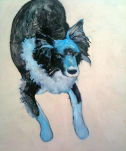 Indy, mijn lieve hond (RIP)