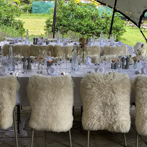 A mid summer wedding celebration for 48