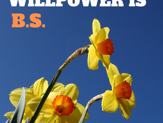 Willpower is B.S