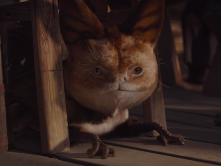 5 Star Wars Pets I'd Love to Have