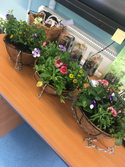 Hanging baskets made off site
