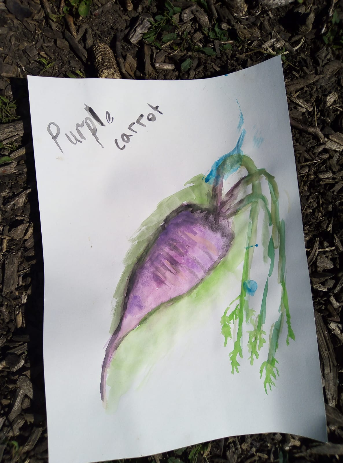 purple carrot painting