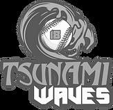 Tsunami Waves
