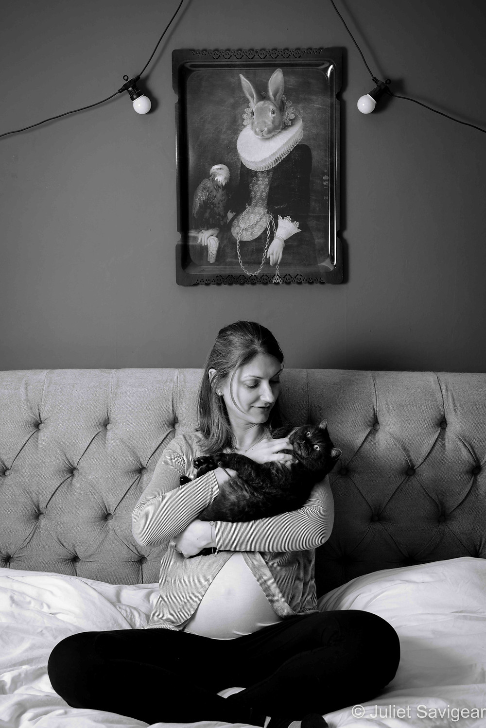 Cats & Rabbits! Pregnancy Photography