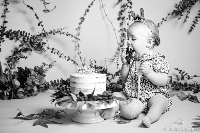 Autumnal Cake Smash and Off To The Park - Balham & Dulwich Park