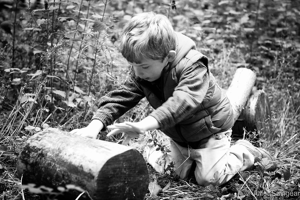 Hunting For Bugs - Twin Children's Photography, Oxfordshire