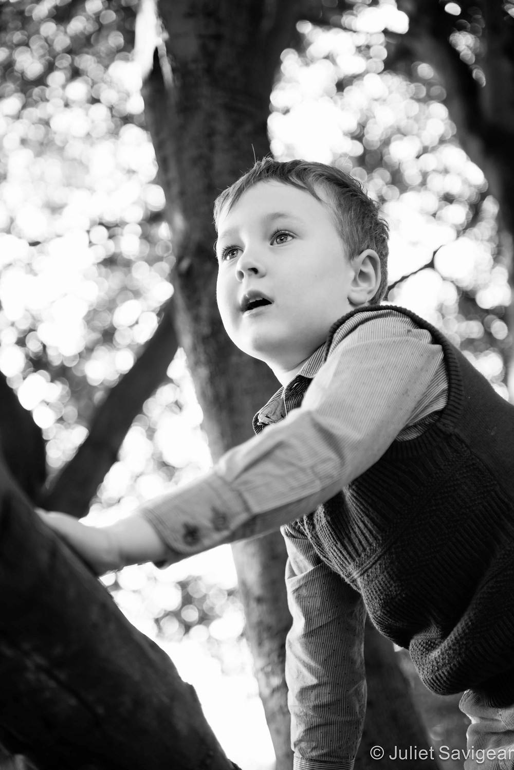 King Of The Castle - Children's Photography, Clapham Common
