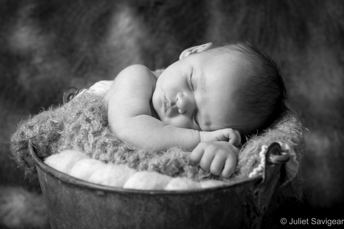 Newborn Baby & Family Photographer - Putney