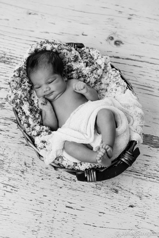 Baby Girl In Basket - Newborn Baby Photography, Norbury
