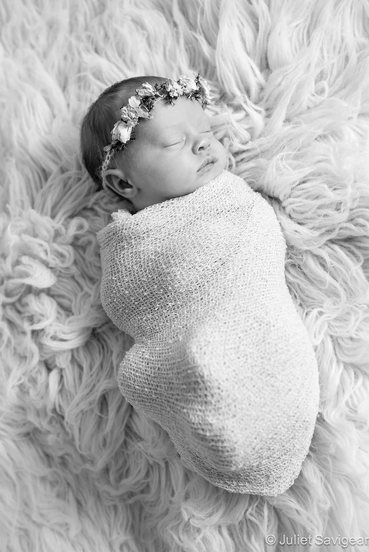 Little Rose Petal - Newborn Baby Photography, Balham