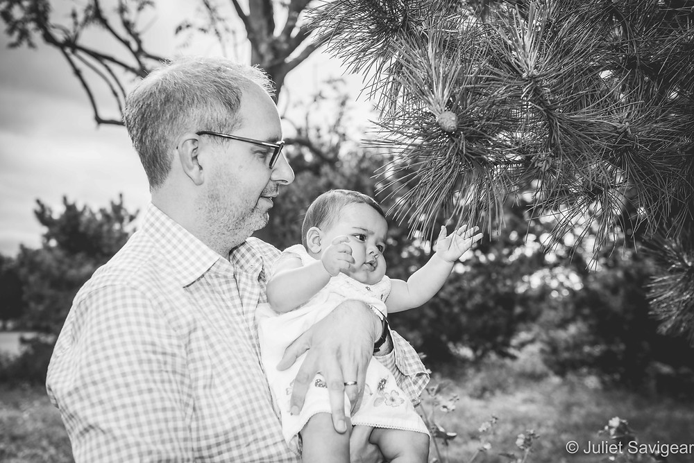 Baby touching pine leaves
