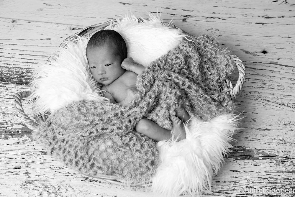 Baby In A Basket - Newborn Baby Photography, Victoria, London
