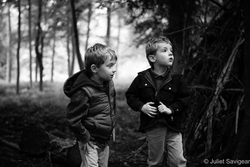 Magical Forest - Twin Children's Photography, Oxfordshire