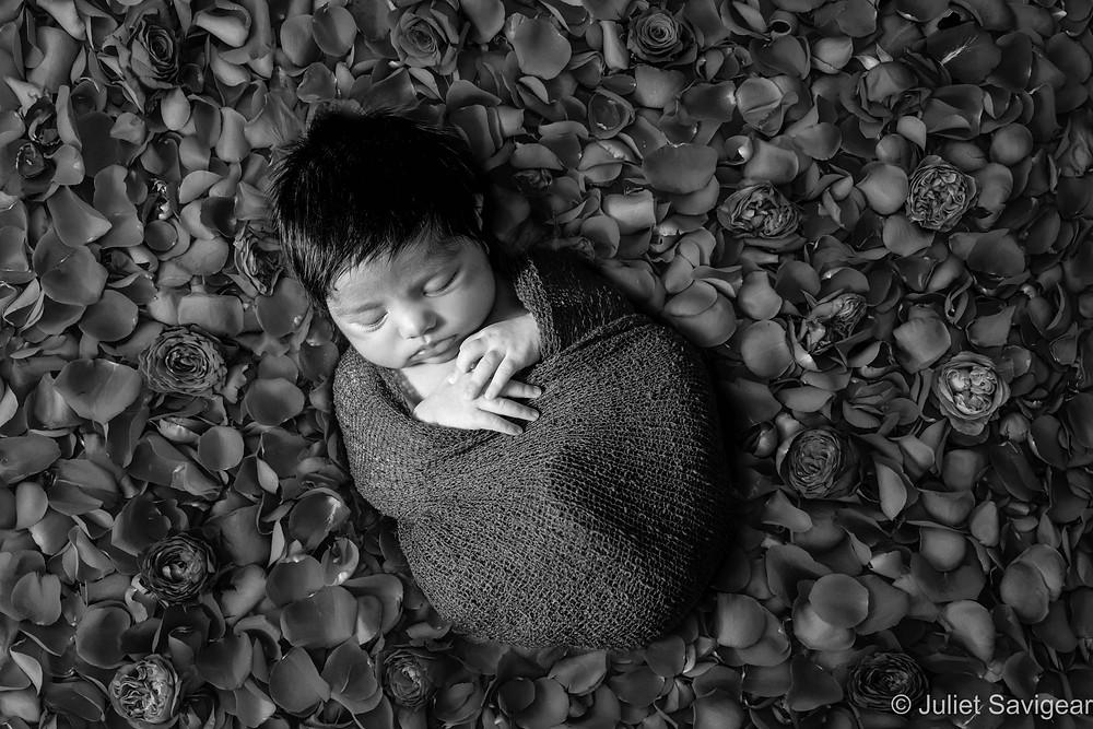 Baby in rose petals