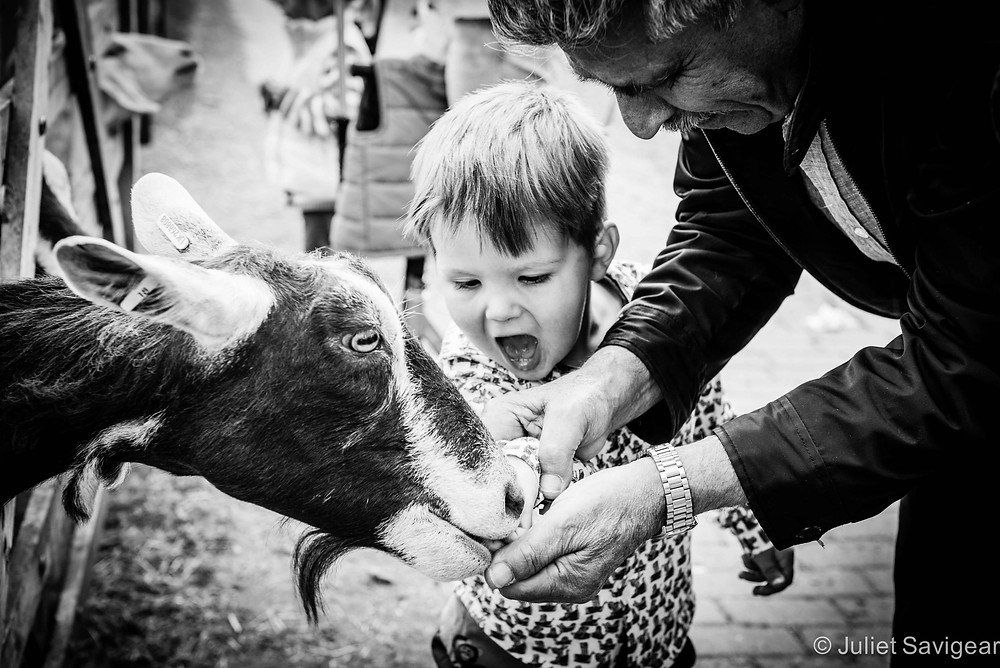 Feeding The Goat - Children's Photography, Wimbledon