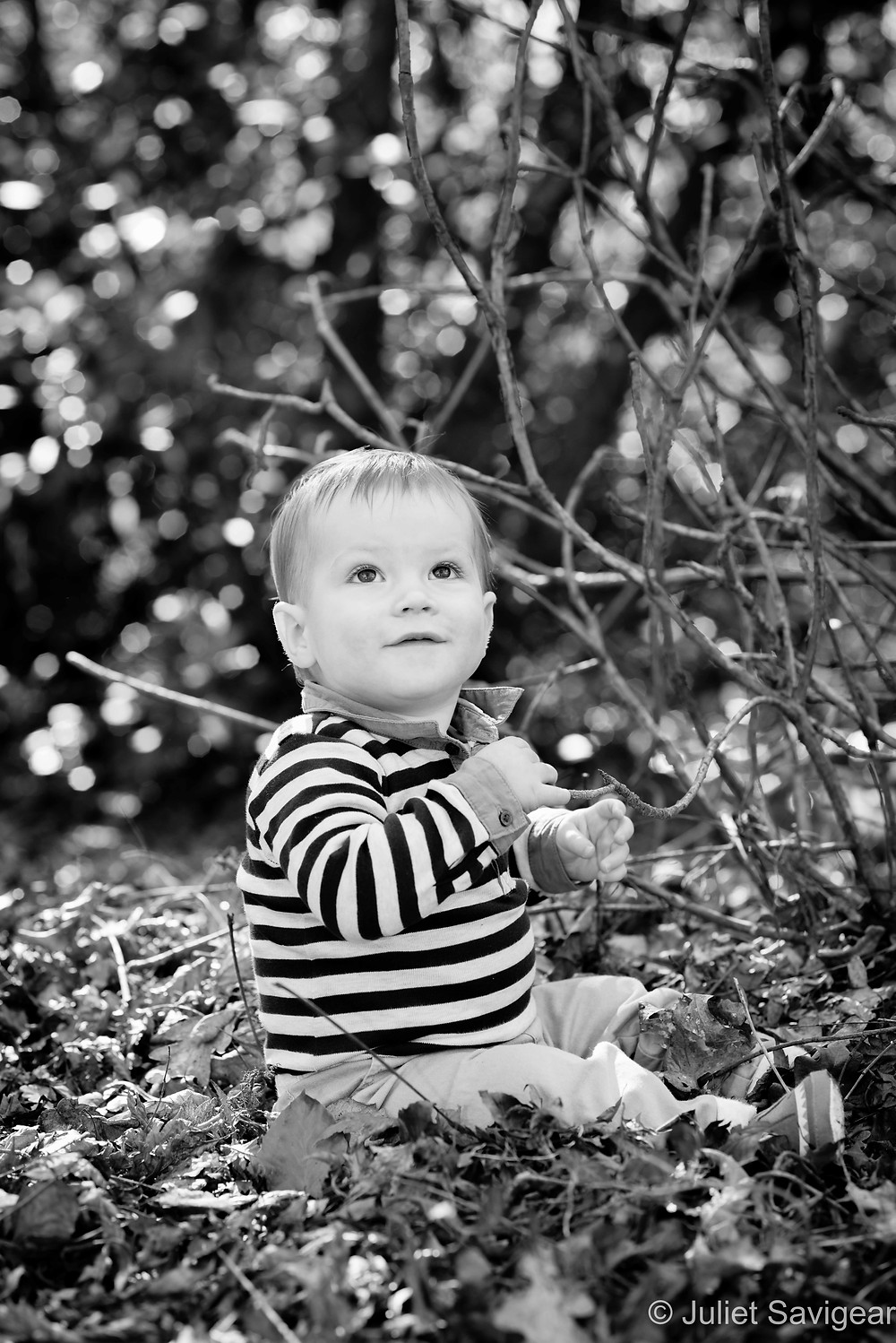 Baby among the leaves and branches