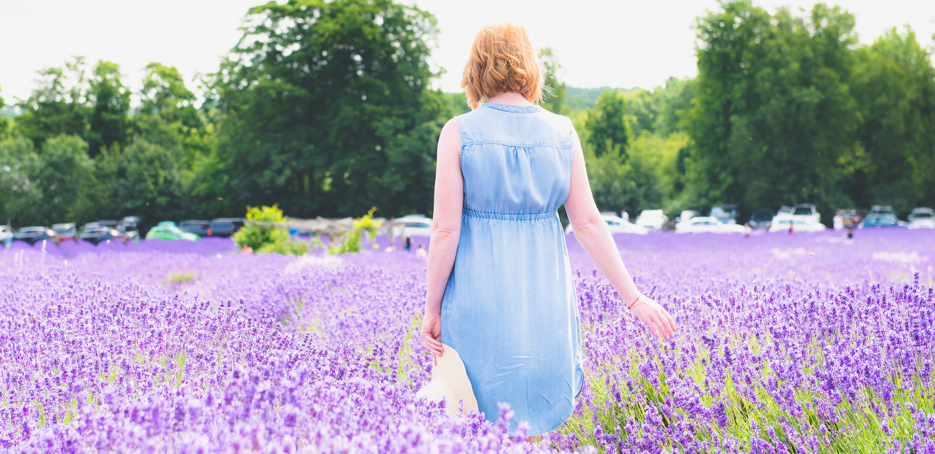 Walking Through The Lavender Feilds