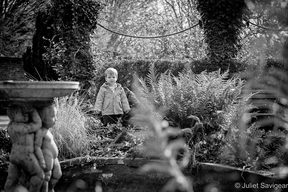 Little boy in the garden