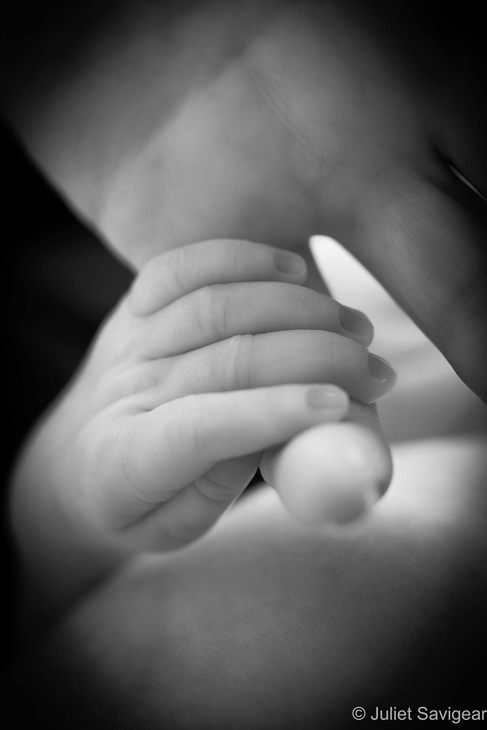 Tiny Hand - Newborn Baby Photography, Earlsfield