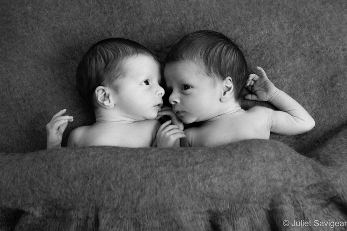 Newborn Baby Twins Photographer - Mitcham, Surrey