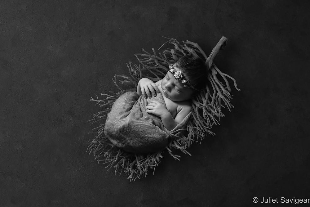 Baby on twig leaf